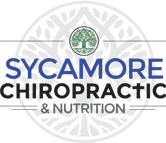 Dr. David Boynton DC Chiropractic Nutrition - Website Logo